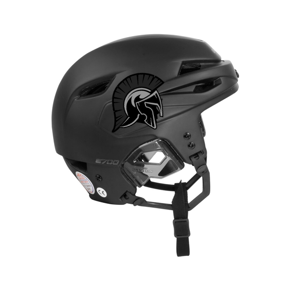 Hockey Helmet Stickers On Gray Helmet